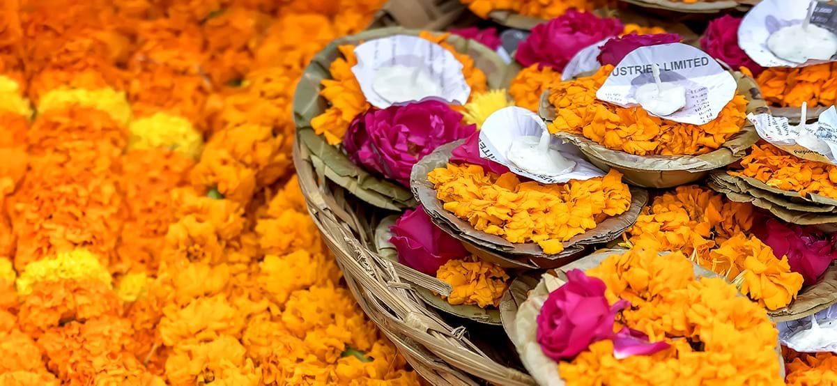 View of holy flowers during luxury international culinary and culture vacation to India