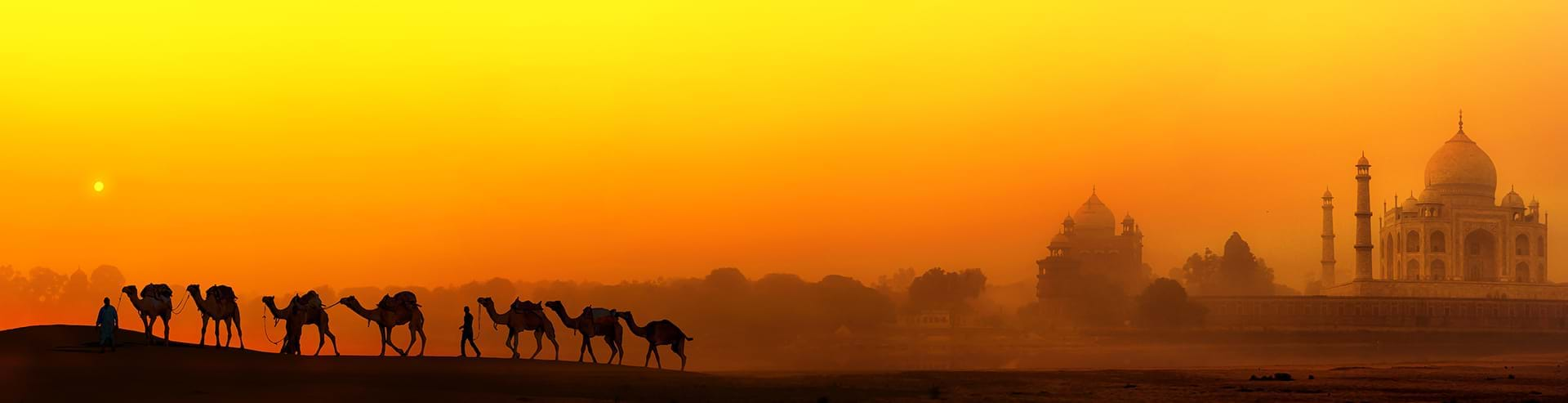 View of travelers during private camel expedition while on a luxury international culinary vacation to India